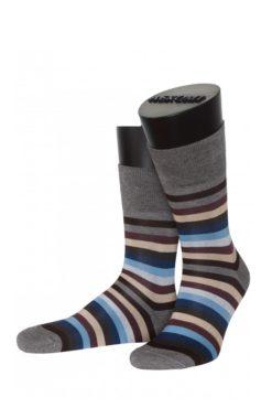 мужские носки ASKOMI AM-6290