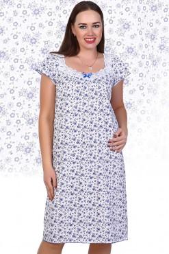 Сорочка Дарья