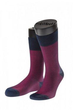 мужские носки ASKOMI АМ-7705